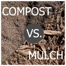 Compost or Mulch – That is the Question